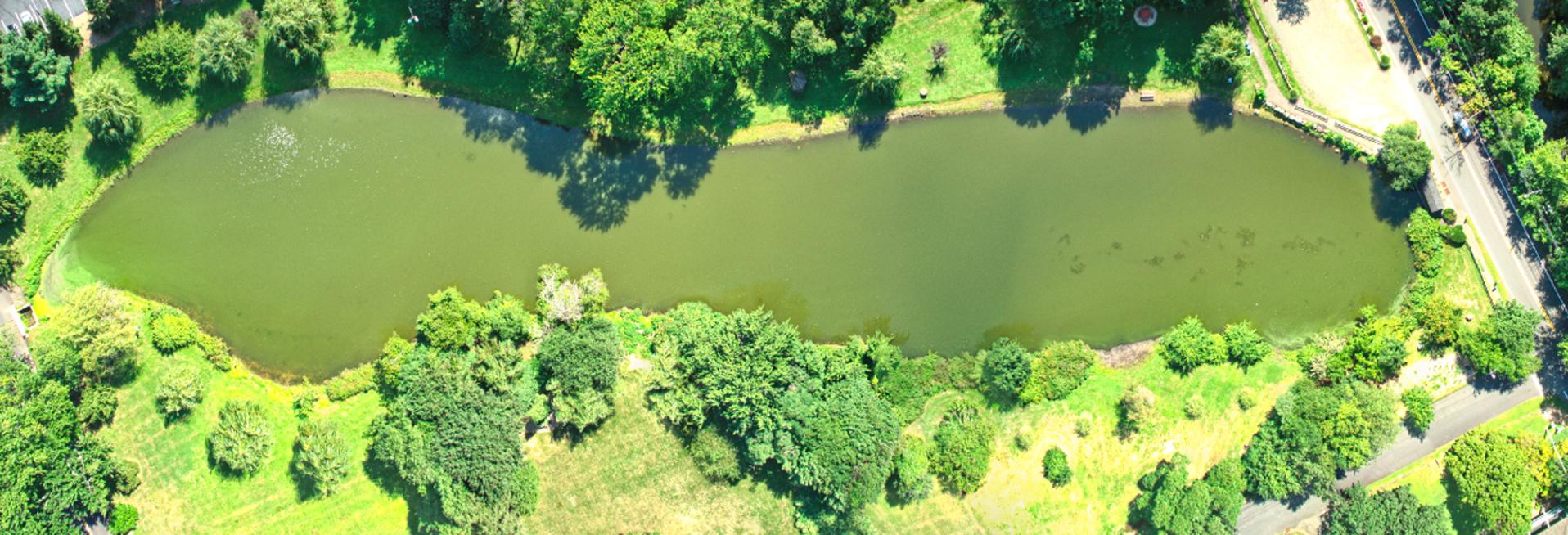 Zabriskie Pond